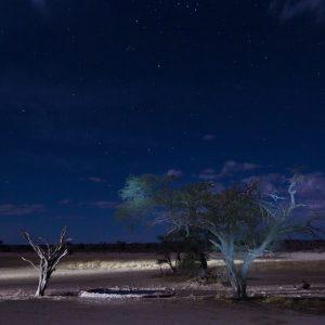 Nassob by Night